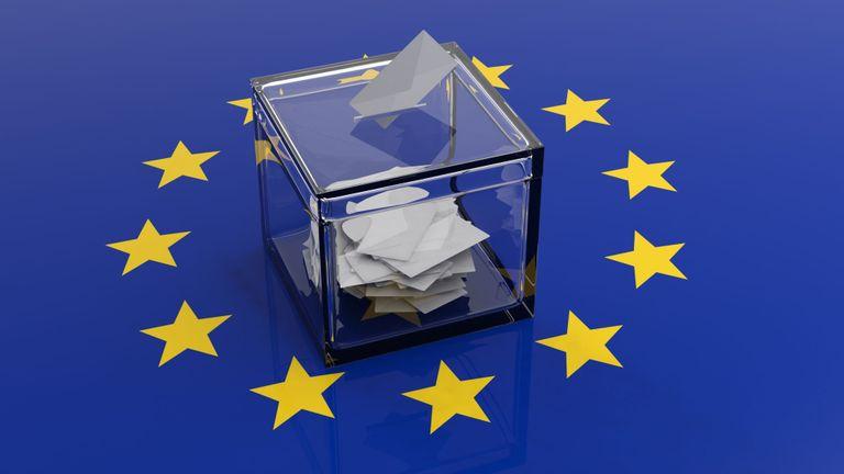 EU Elections Results