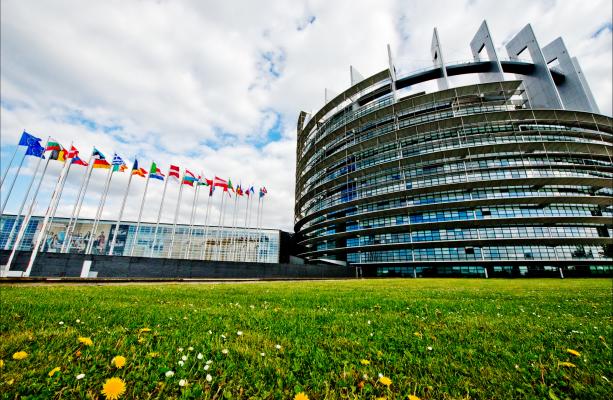 Greens in the European Parliament