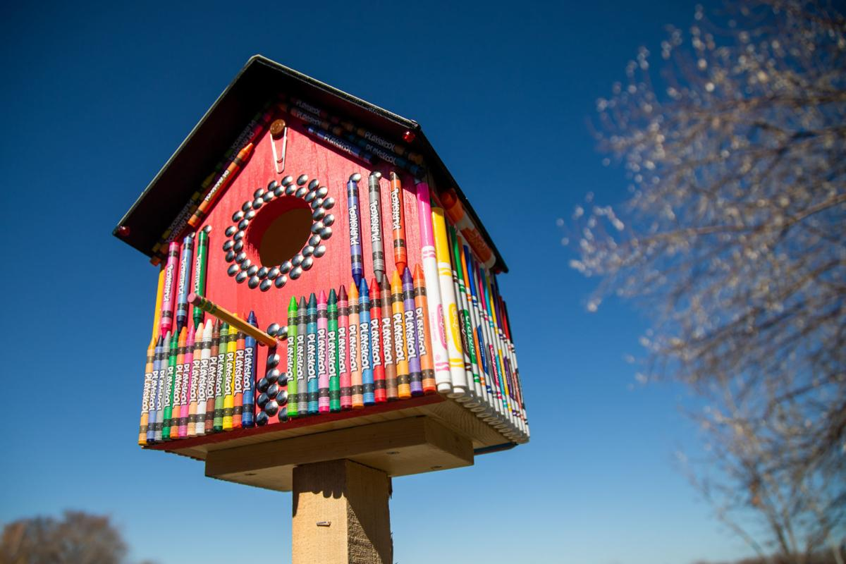 Digital birdhouses